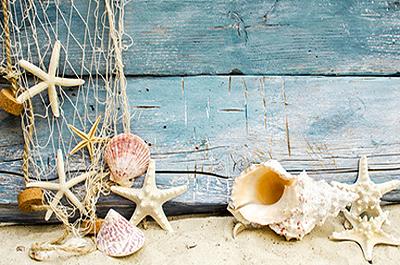 Strandmotiv | Ostsee Ferienwohnung